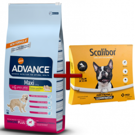 Pack: Advance Maxi Senior 15 KG + Scalibor Collar antiparasitario 48 cm