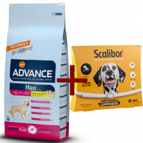 Pack: Advance Maxi Senior 15 KG + Scalibor Collar antiparasitario 65 cm