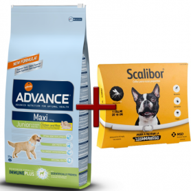 Pack: Advance Maxi Junior 15 KG + Scalibor Collar antiparasitario 48 cm