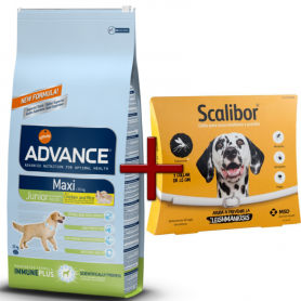 Pack: Advance Maxi Junior 15 KG + Scalibor Collar antiparasitario 65 cm