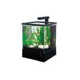 Acuario Aquabox Completo con luminación Led Y Filtro 20,5x19x27cm