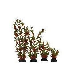 Planta Plástica 10cm Verde/Naranja blister