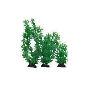 Planta Plástica 10cm Verde blister