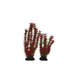 Planta Plástica 10-13cm Roja